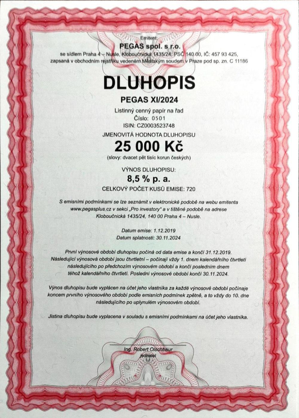 DLUHOPISY PEGAS XI/2024